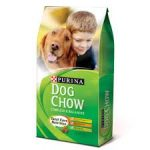 20% off Purina Dog Food