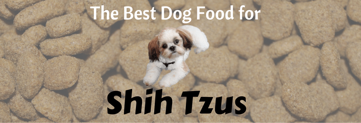 The Best Dog Food For Shih Tzu 2016 Guide