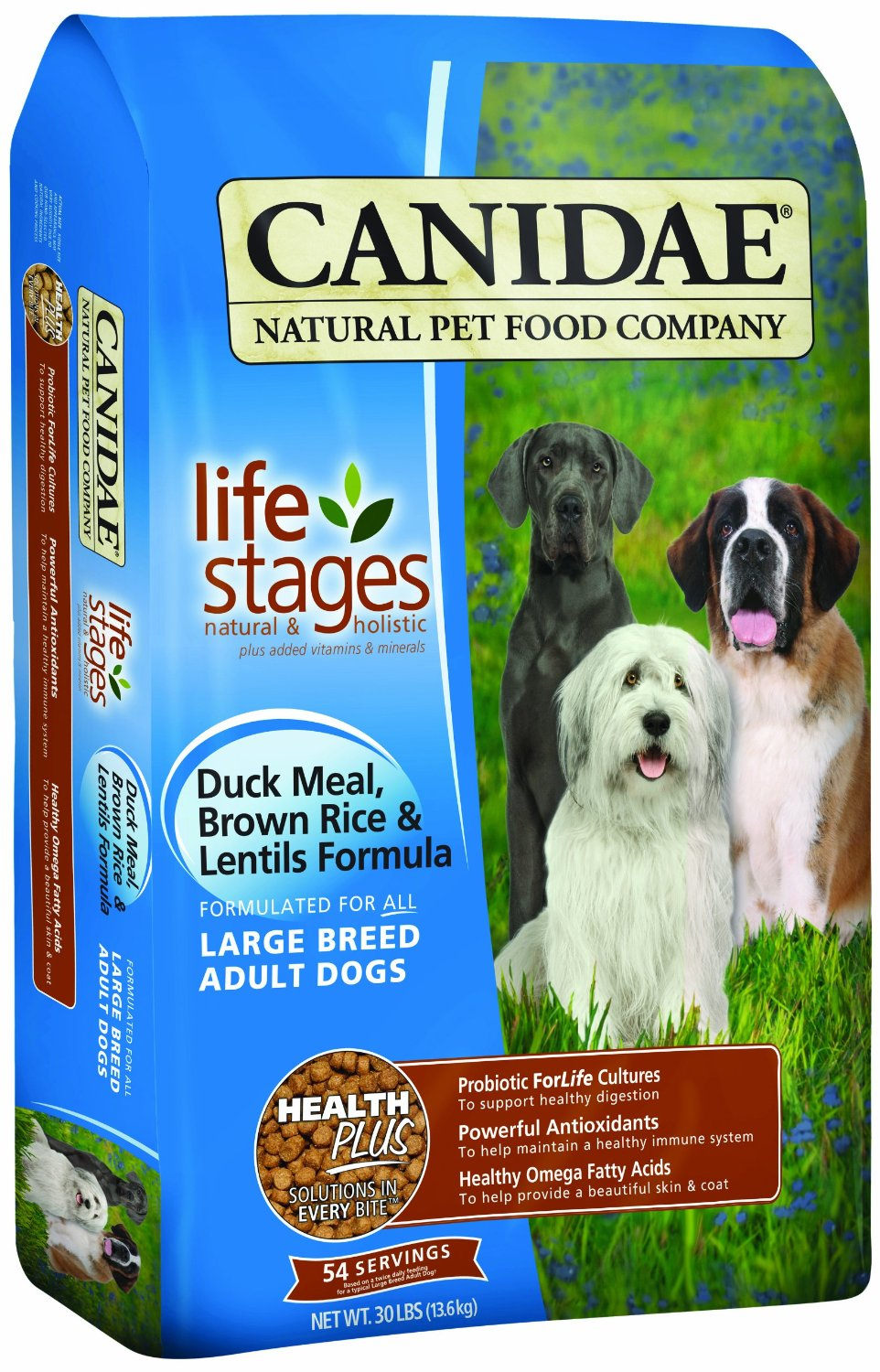What Is The Best Dog Food For Overweight Senior Dogs