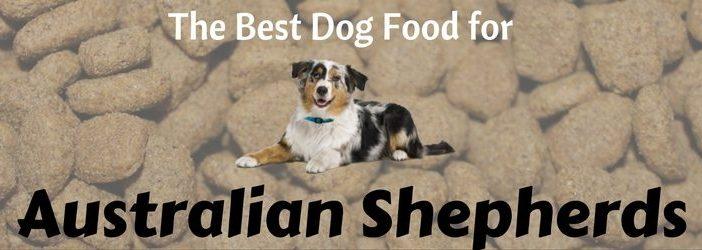 Best Dry Dog Food For Australian Shepherds